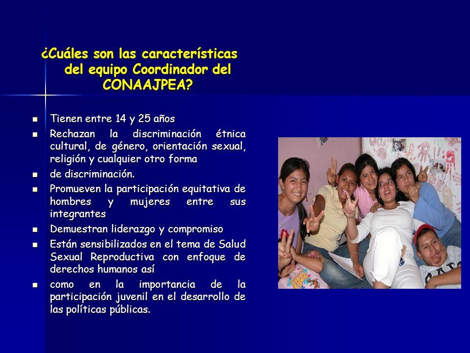 ¿Cuáles son las características del equipo Coordinador del CONAAJPEA