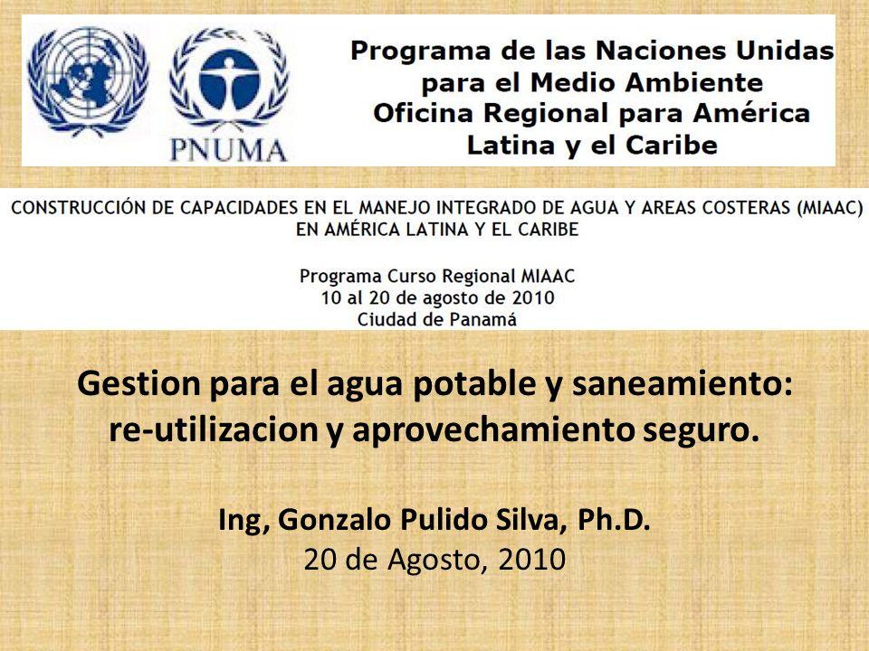 Ing, Gonzalo Pulido Silva, Ph.D.