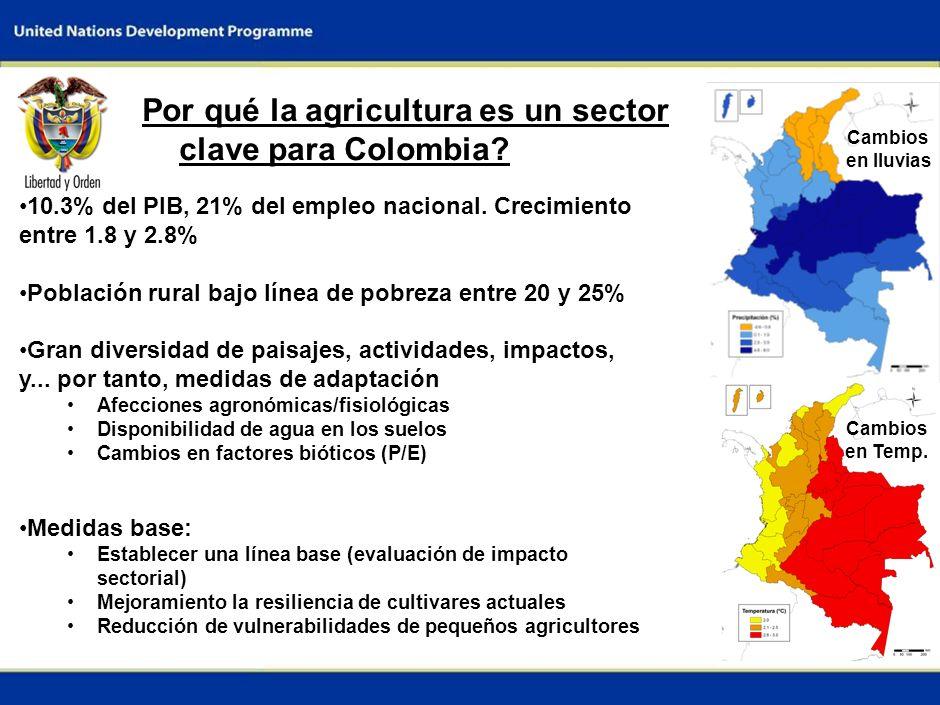 Por qué la agricultura es un sector clave para Colombia