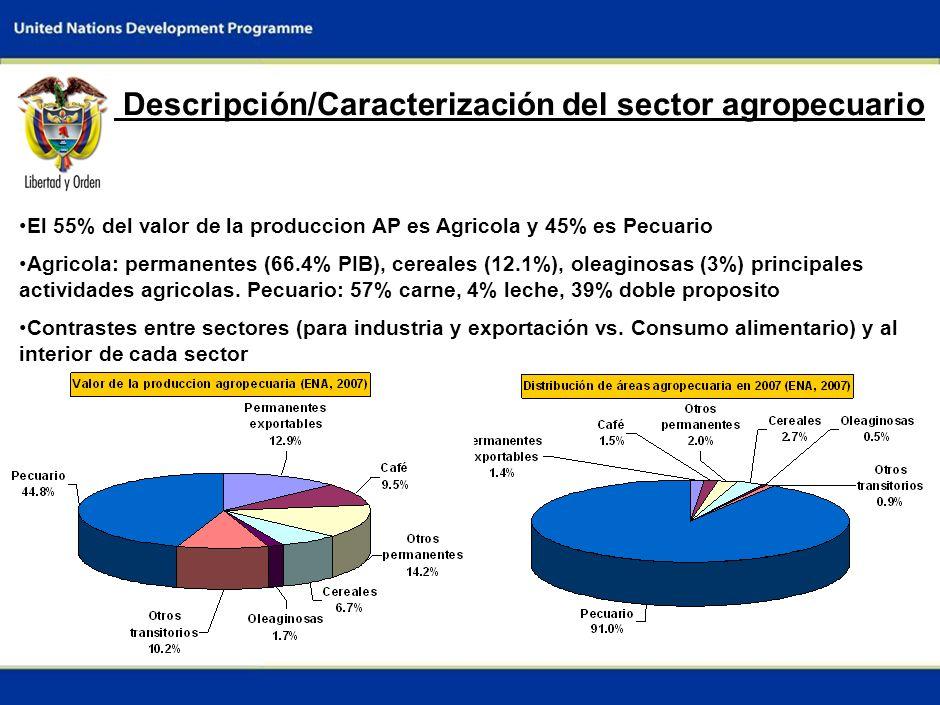 Descripción/Caracterización del sector agropecuario