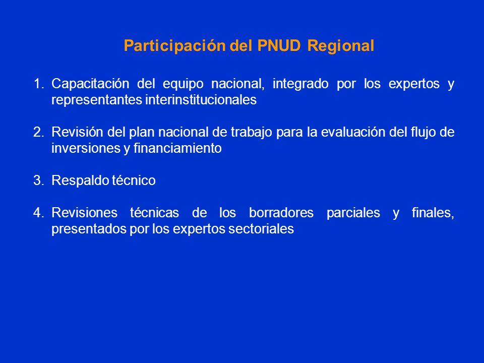 Participación del PNUD Regional