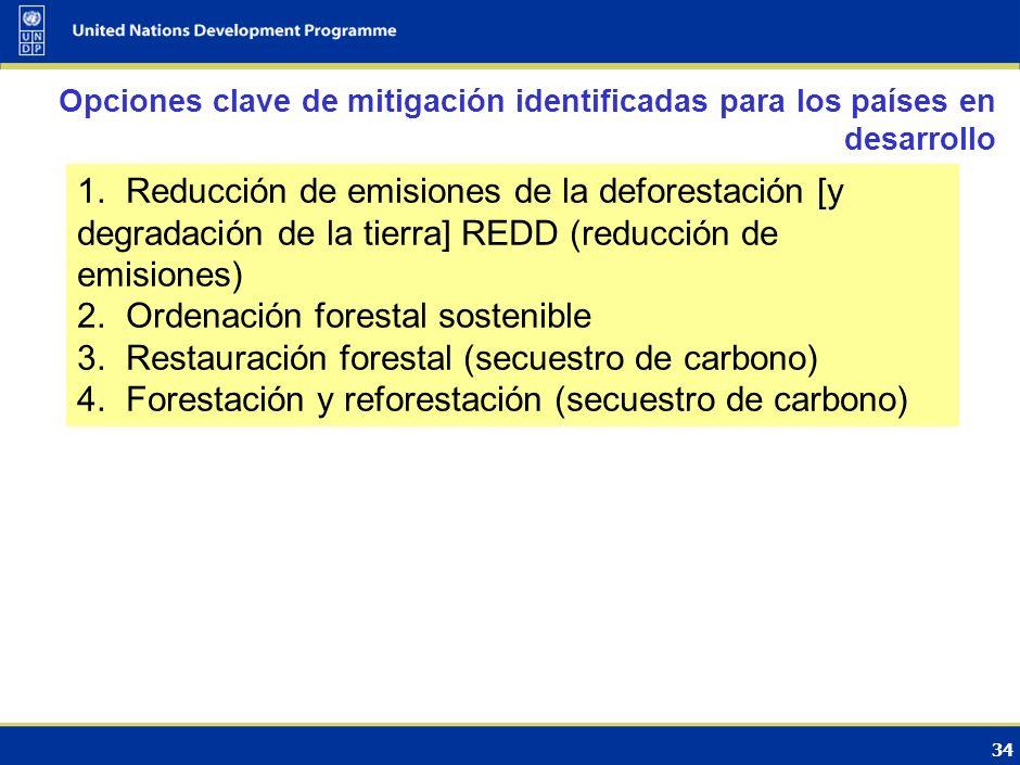 Ordenación forestal sostenible
