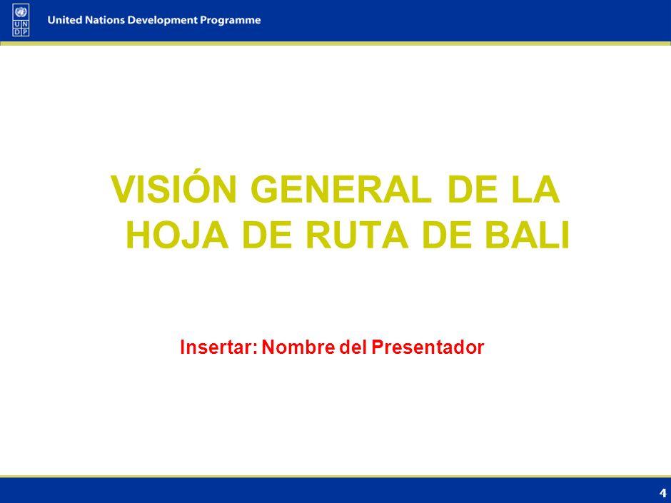 VISIÓN GENERAL DE LA HOJA DE RUTA DE BALI