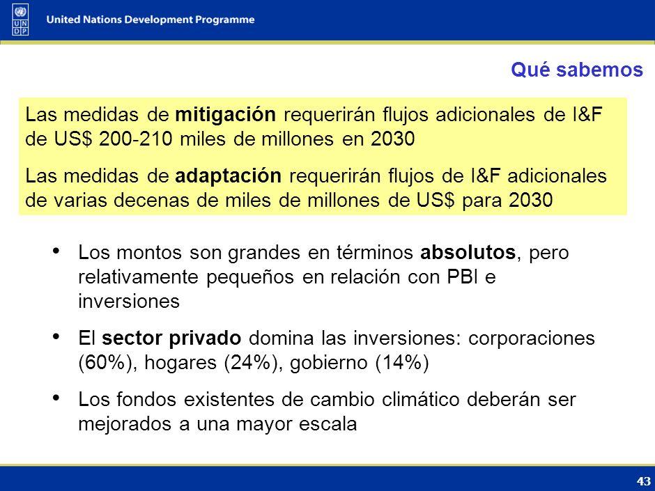 Qué sabemos Las medidas de mitigación requerirán flujos adicionales de I&F de US$ 200-210 miles de millones en 2030.