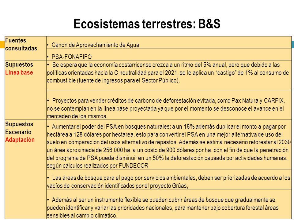 Ecosistemas terrestres: B&S