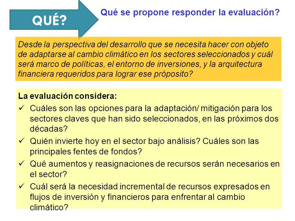 QUÉ Qué se propone responder la evaluación