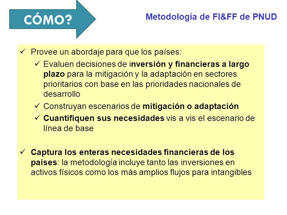 CÓMO Metodología de FI&FF de PNUD