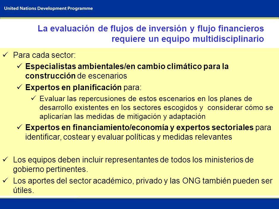 La evaluación de flujos de inversión y flujo financieros requiere un equipo multidisciplinario