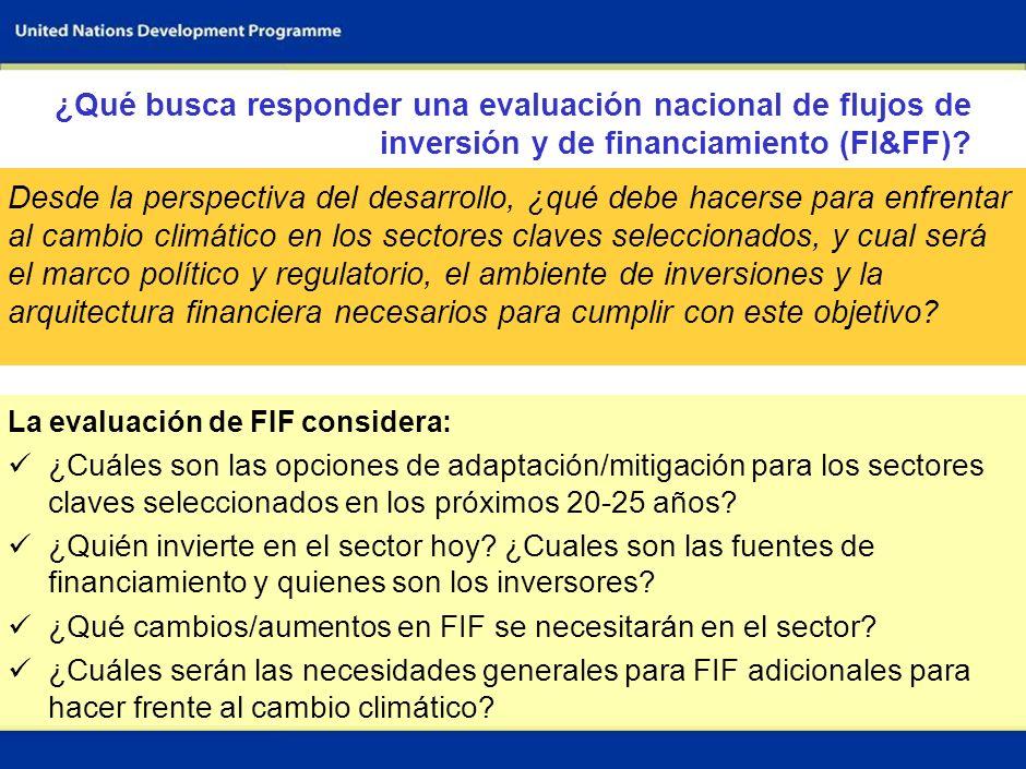 ¿Qué busca responder una evaluación nacional de flujos de inversión y de financiamiento (FI&FF)