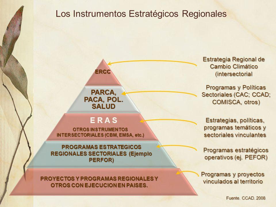 Los Instrumentos Estratégicos Regionales