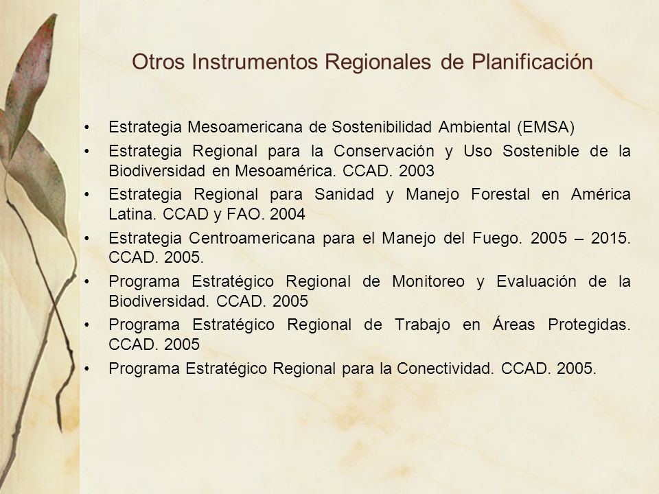 Otros Instrumentos Regionales de Planificación