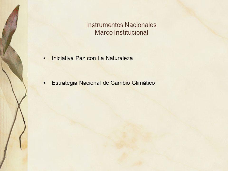 Instrumentos Nacionales Marco Institucional