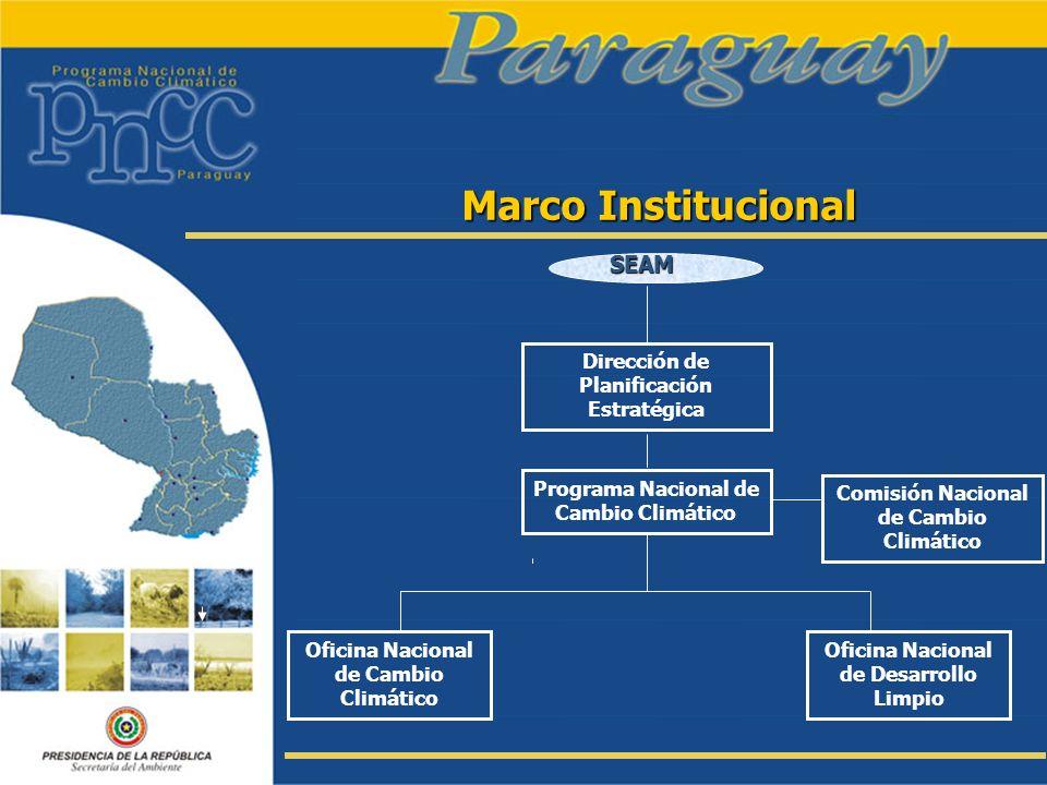 Marco Institucional SEAM Dirección de Planificación Estratégica