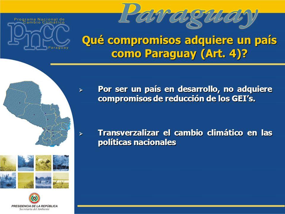 Qué compromisos adquiere un país como Paraguay (Art. 4)