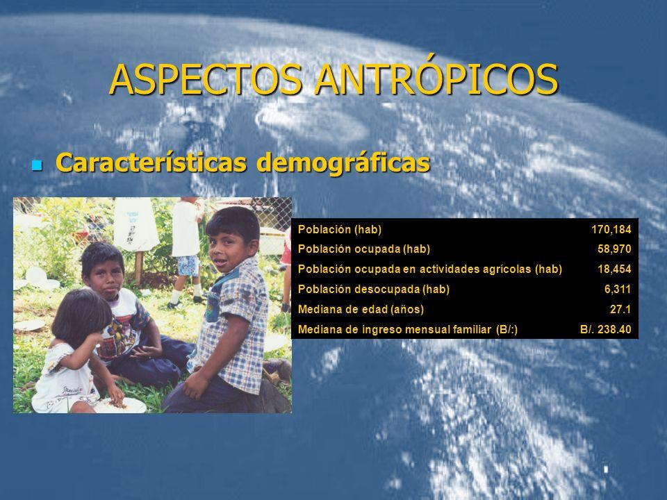 ASPECTOS ANTRÓPICOS Características demográficas Población (hab)