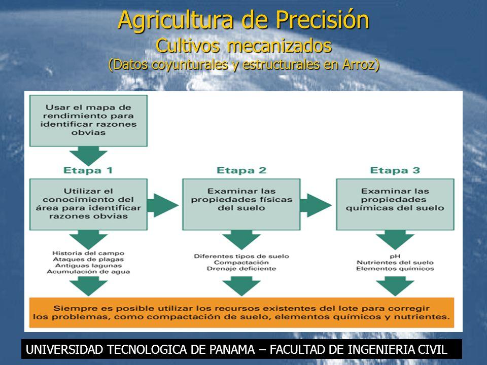 Agricultura de Precisión Cultivos mecanizados (Datos coyunturales y estructurales en Arroz)