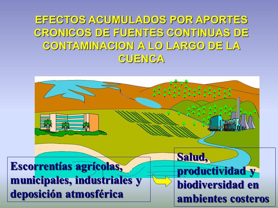 Salud, productividad y biodiversidad en ambientes costeros