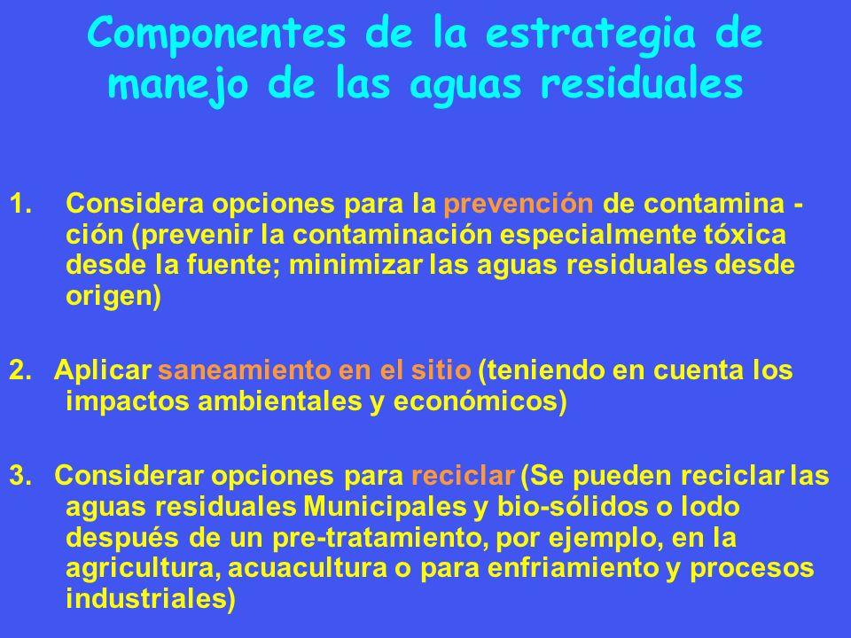 Componentes de la estrategia de manejo de las aguas residuales