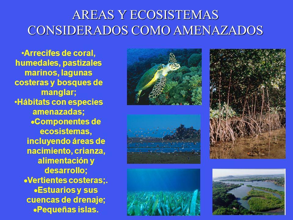 Hábitats con especies amenazadas; Estuarios y sus cuencas de drenaje;