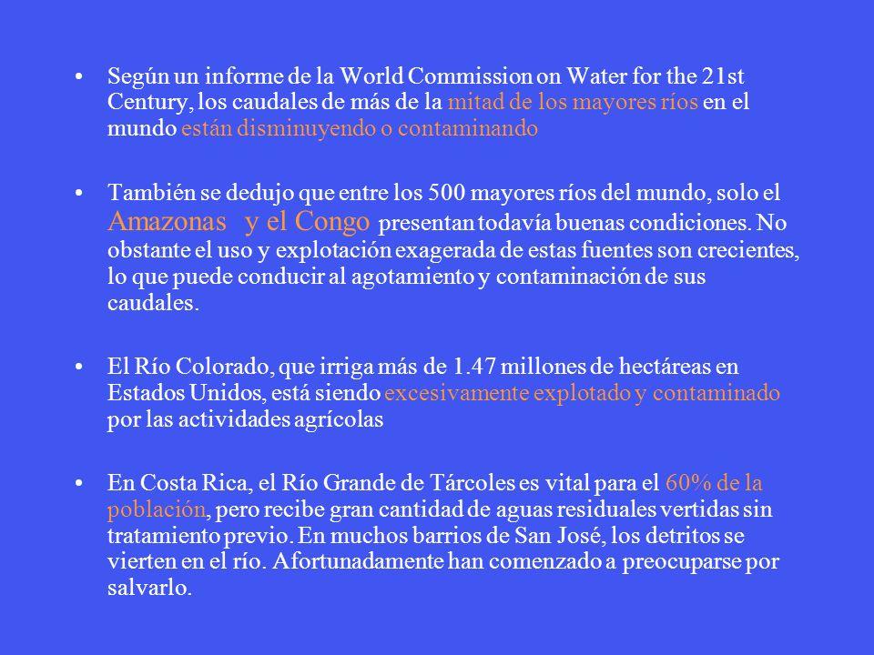 Según un informe de la World Commission on Water for the 21st Century, los caudales de más de la mitad de los mayores ríos en el mundo están disminuyendo o contaminando