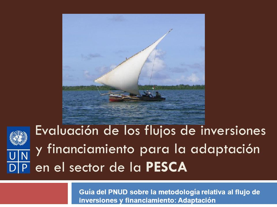 Evaluación de los flujos de inversiones y financiamiento para la adaptación en el sector de la PESCA
