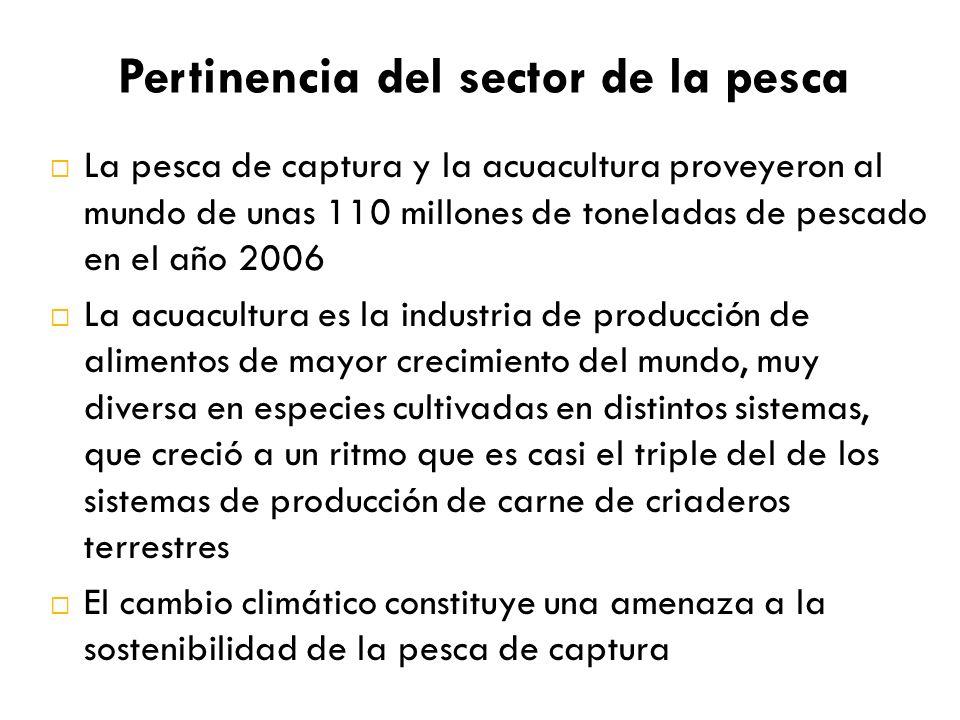Pertinencia del sector de la pesca