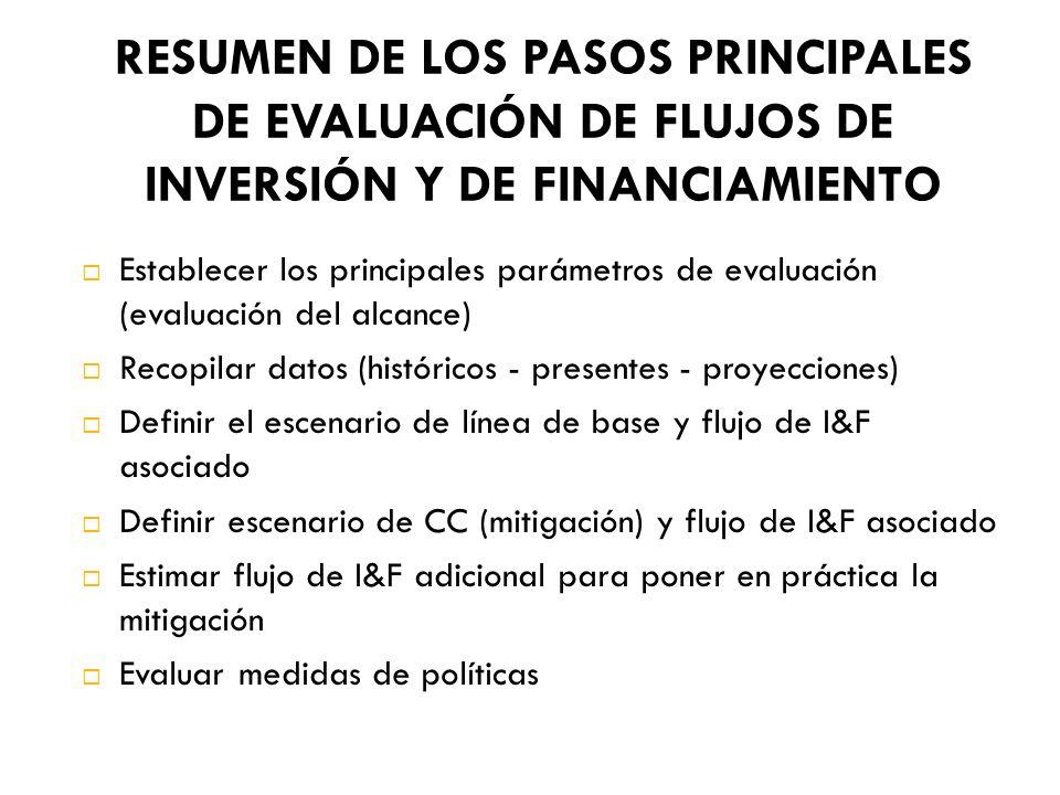 RESUMEN DE LOS PASOS PRINCIPALES DE EVALUACIÓN DE FLUJOS DE INVERSIÓN Y DE FINANCIAMIENTO