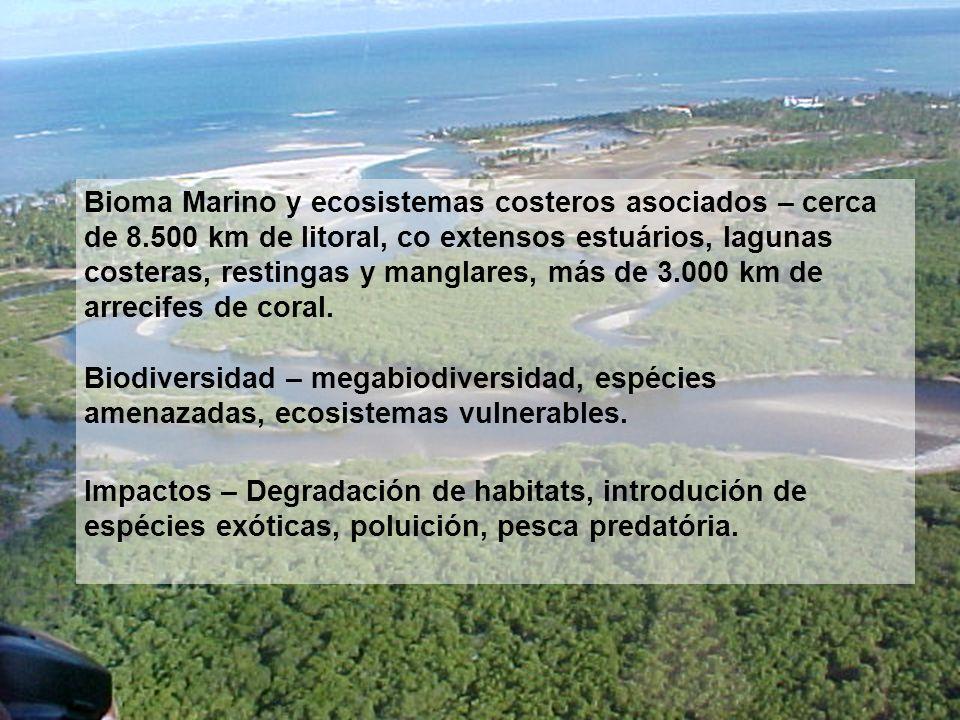 Bioma Marino y ecosistemas costeros asociados – cerca de 8