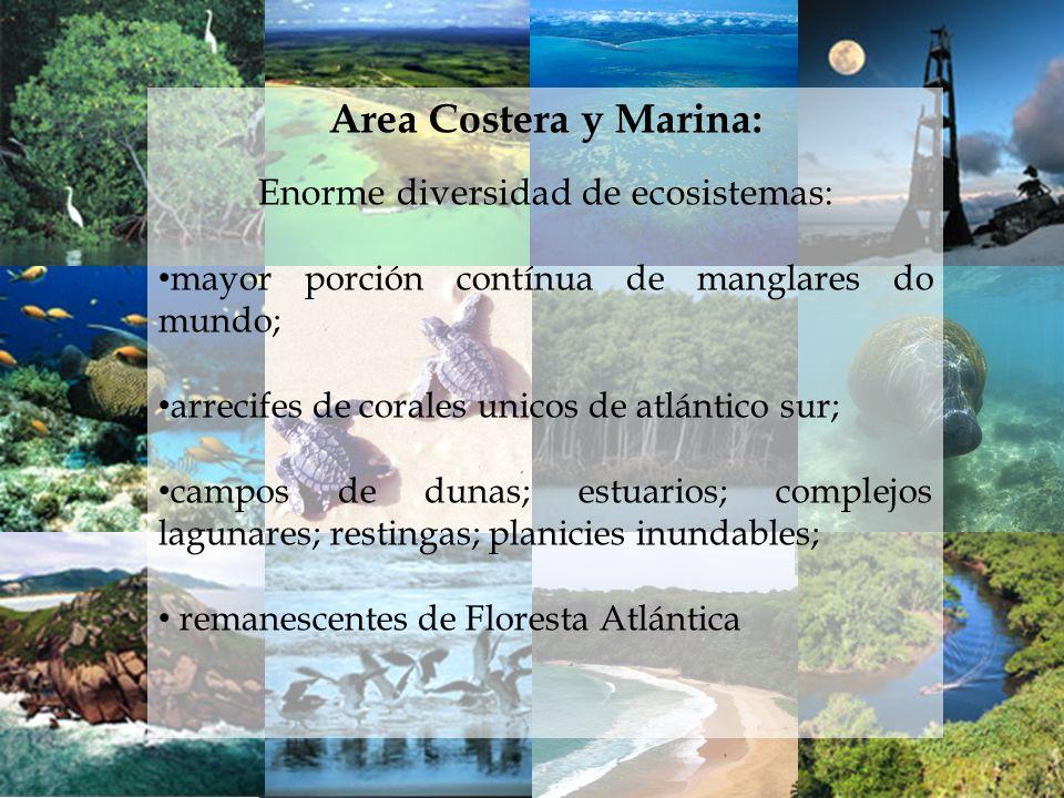 Enorme diversidad de ecosistemas: