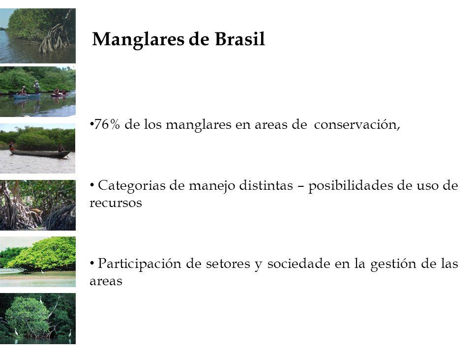 Manglares de Brasil 76% de los manglares en areas de conservación,