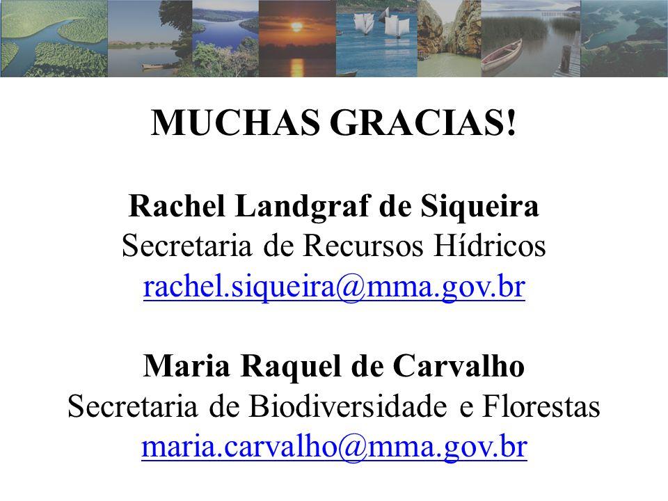 Rachel Landgraf de Siqueira Maria Raquel de Carvalho
