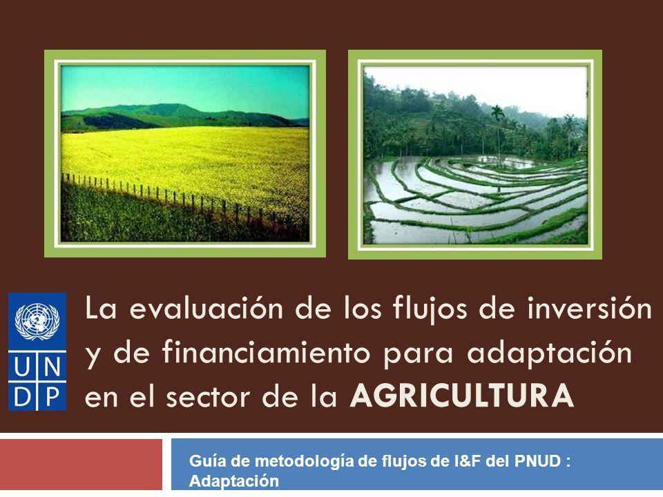 La evaluación de los flujos de inversión y de financiamiento para adaptación en el sector de la AGRICULTURA