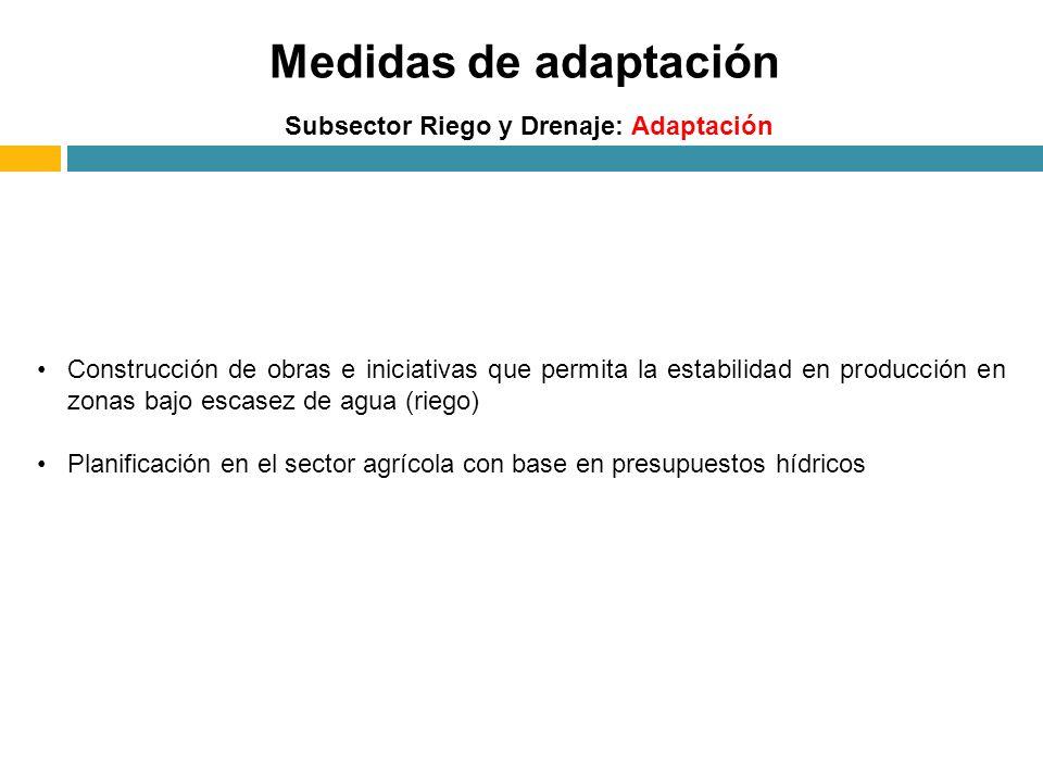 Medidas de adaptación Subsector Riego y Drenaje: Adaptación