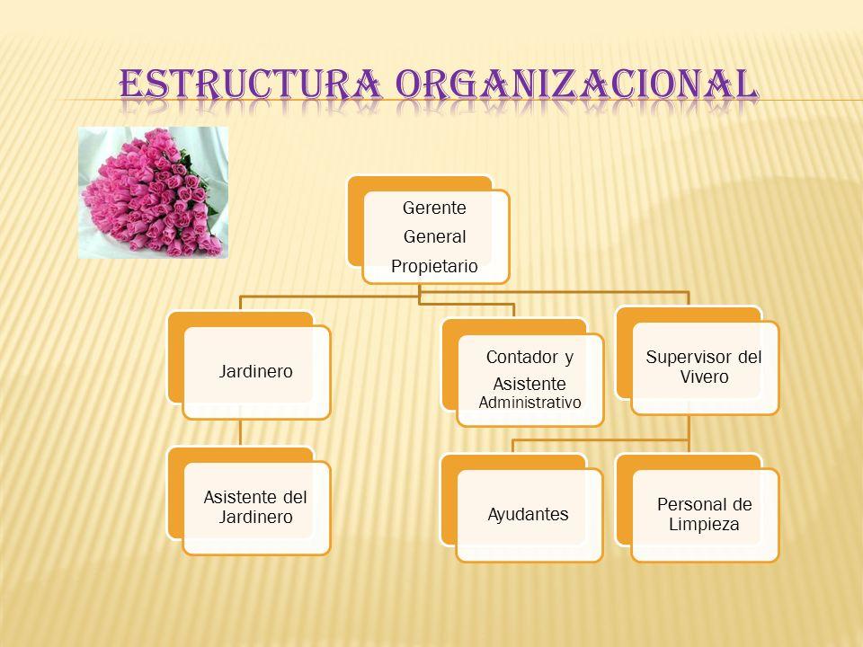 Presentaci n del plan de negocios ppt video online descargar for Estructura vivero