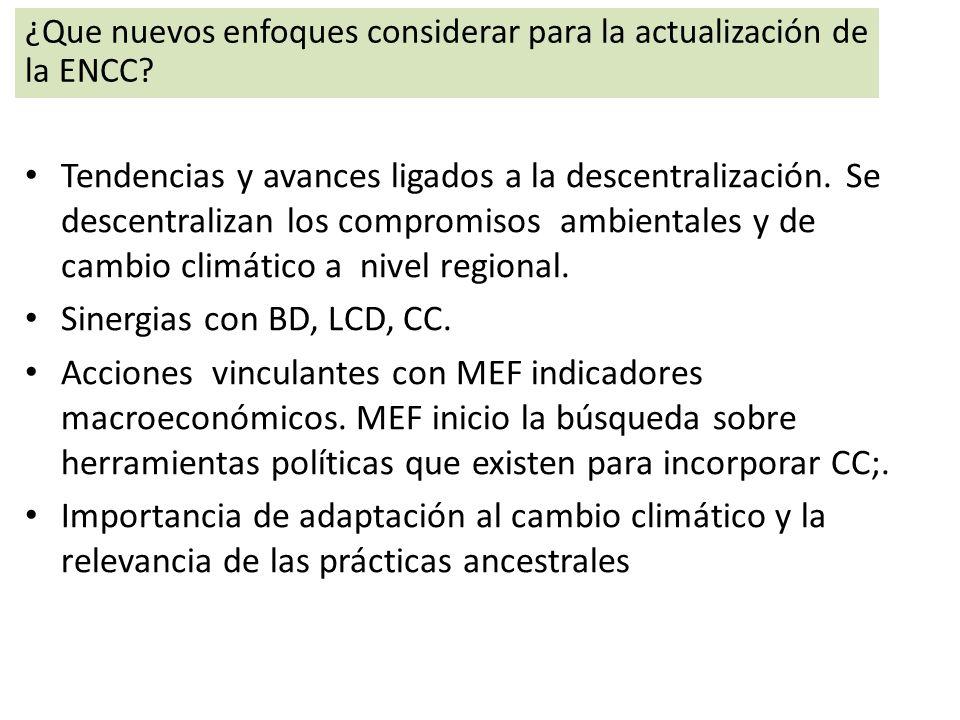 ¿Que nuevos enfoques considerar para la actualización de la ENCC