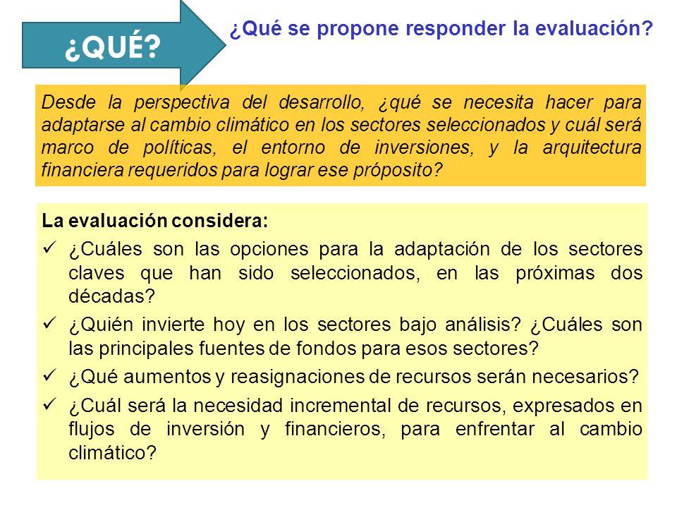 ¿QUÉ ¿Qué se propone responder la evaluación