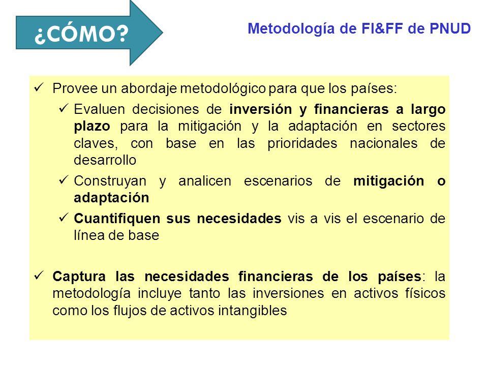 ¿CÓMO Metodología de FI&FF de PNUD