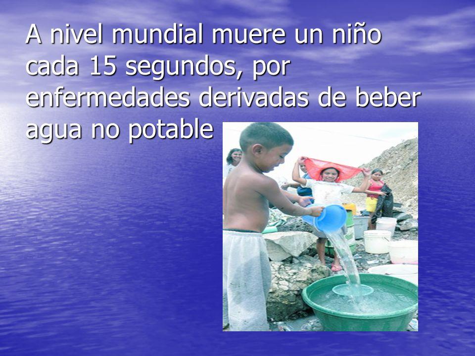 A nivel mundial muere un niño cada 15 segundos, por enfermedades derivadas de beber agua no potable