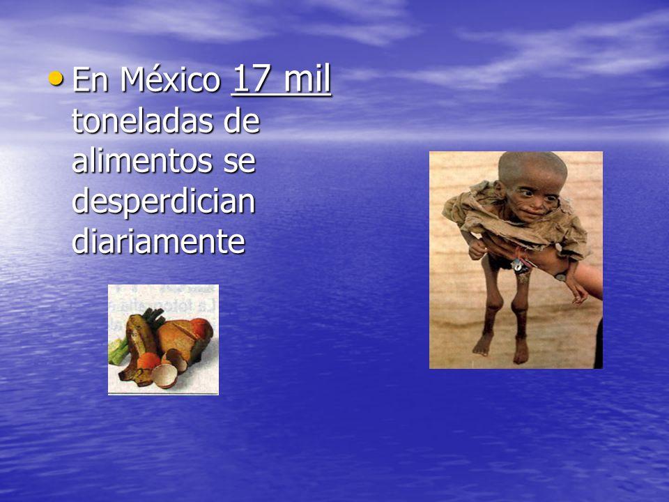 En México 17 mil toneladas de alimentos se desperdician diariamente