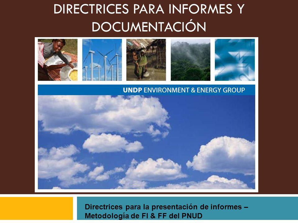 DIRECTRICES PARA INFORMES Y DOCUMENTACIÓN
