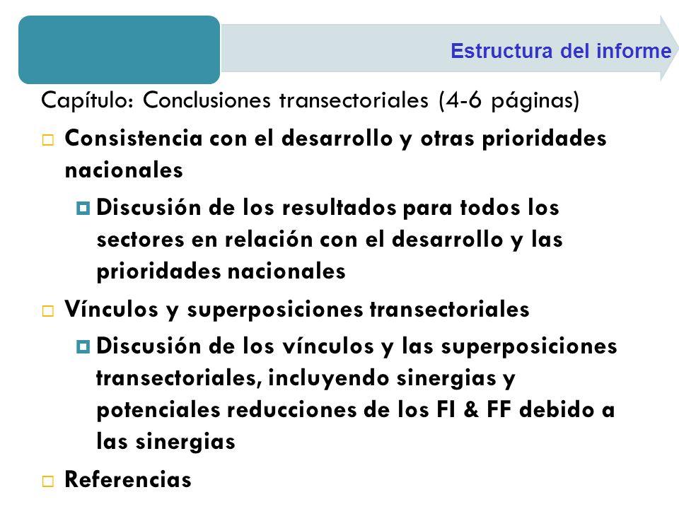 Capítulo: Conclusiones transectoriales (4-6 páginas)