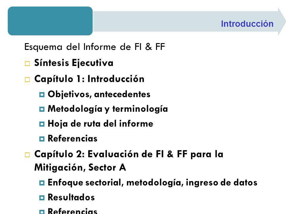 Esquema del Informe de FI & FF Síntesis Ejecutiva