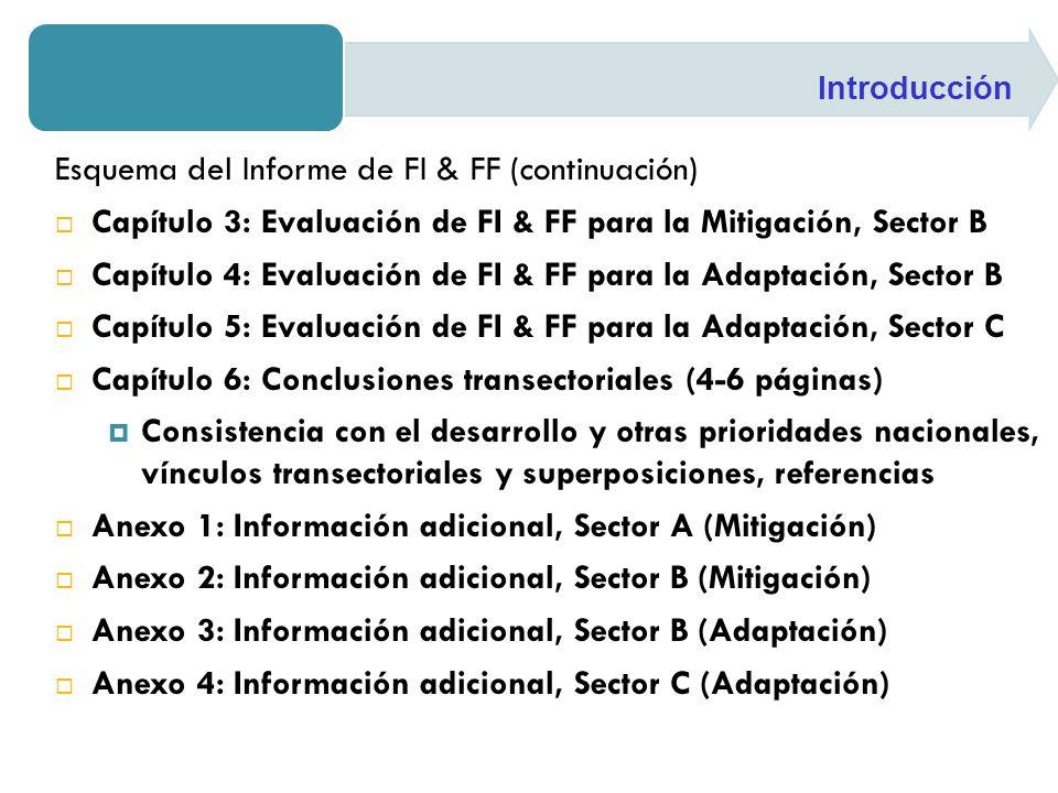 Esquema del Informe de FI & FF (continuación)