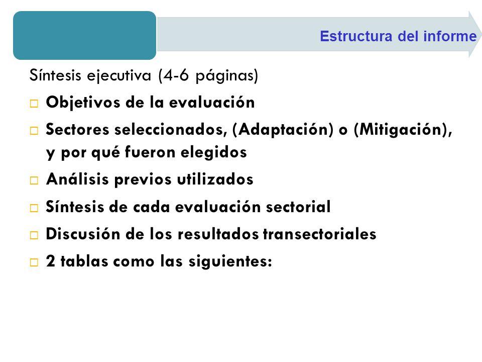 Síntesis ejecutiva (4-6 páginas) Objetivos de la evaluación