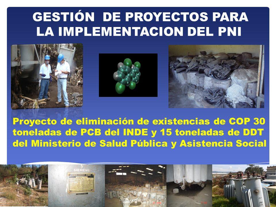 GESTIÓN DE PROYECTOS PARA LA IMPLEMENTACION DEL PNI