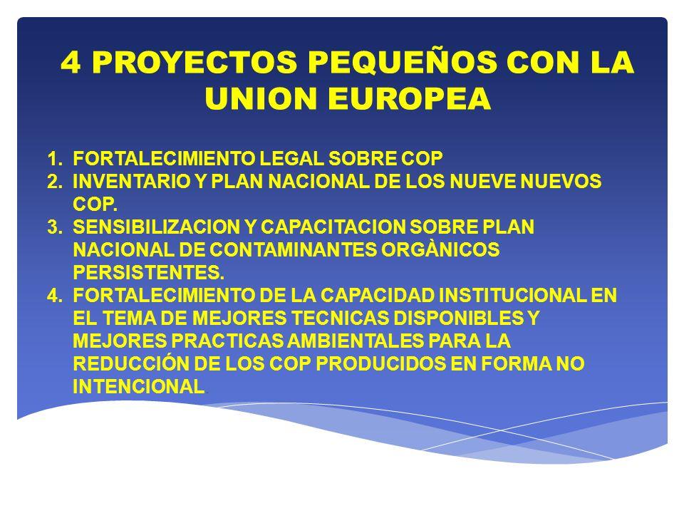 4 PROYECTOS PEQUEÑOS CON LA UNION EUROPEA