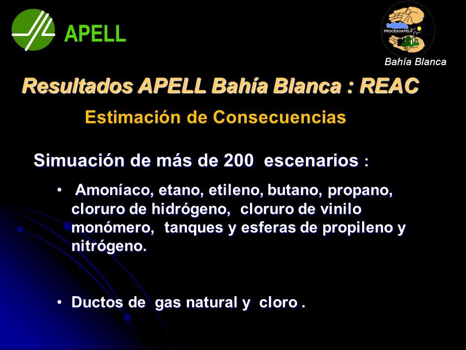 Resultados APELL Bahía Blanca : REAC Estimación de Consecuencias