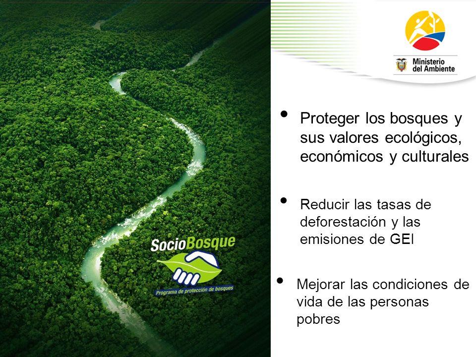 Proteger los bosques y sus valores ecológicos, económicos y culturales