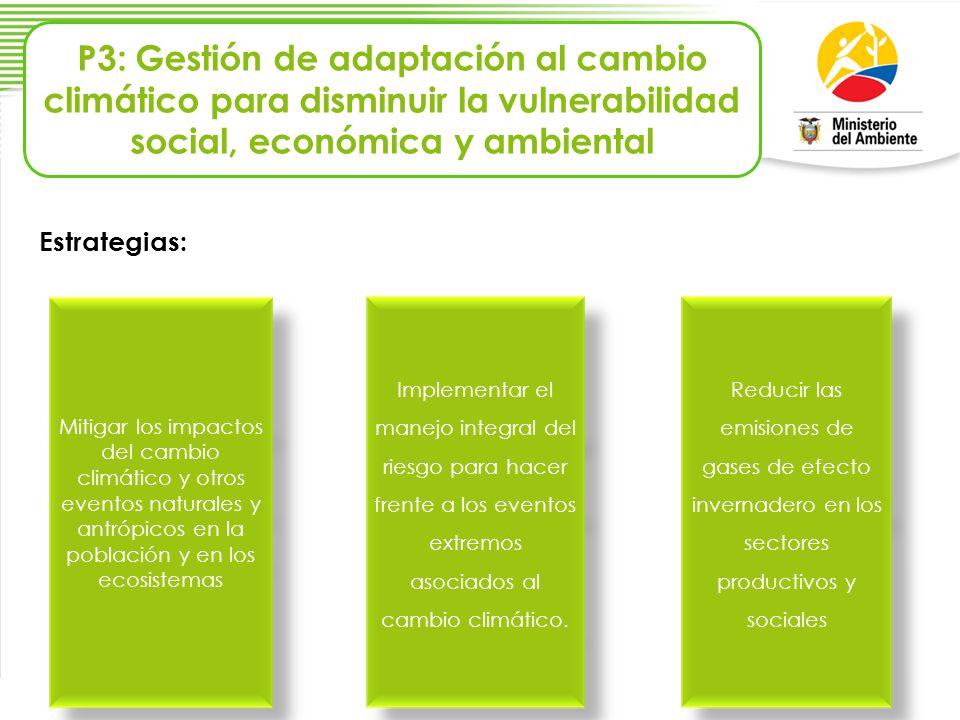P3: Gestión de adaptación al cambio climático para disminuir la vulnerabilidad social, económica y ambiental