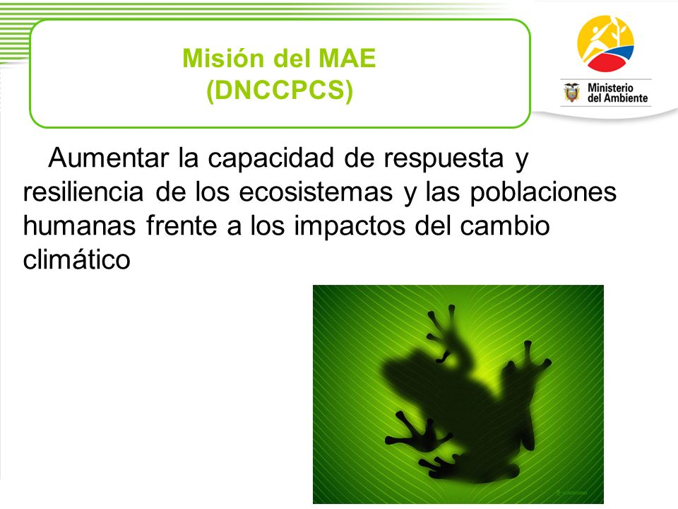 Misión del MAE (DNCCPCS)